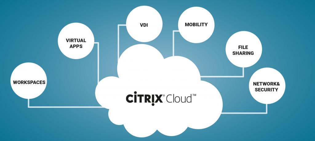 Citrix Service Provider by Bin Control